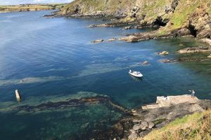 Power Head, East of Roches Point is a lovely sheltered spot and amazing for snorkelling and diving.